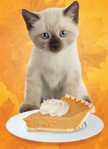Funny Thanksgiving Ecard